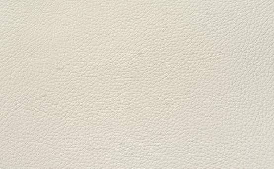 本革(牛) ヴィーゴホワイト色 品番:X391