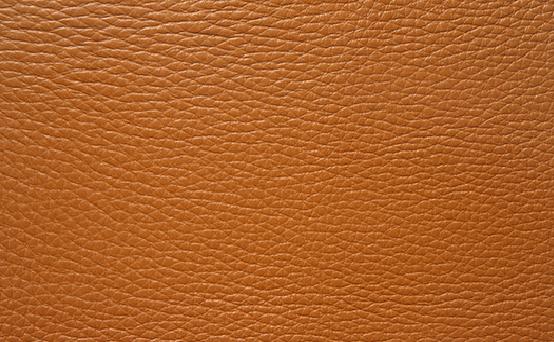 本革(牛) ヴィーゴキャメル色 品番:X493