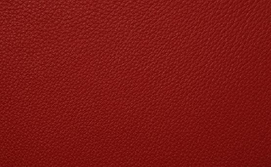 本革(牛) ヴィーゴレッド色 品番:X574